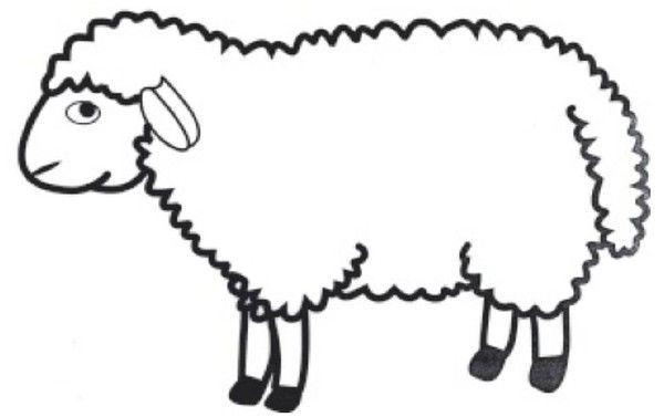 Le gabarit du mouton - Mouton en dessin ...