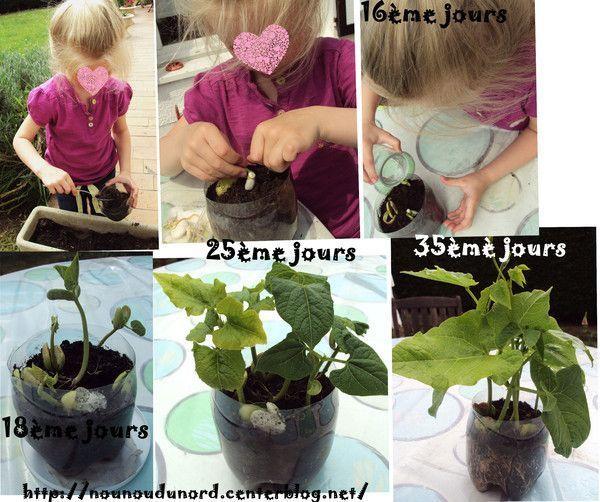 Activite jardinage for Les meilleurs sites de jardinage