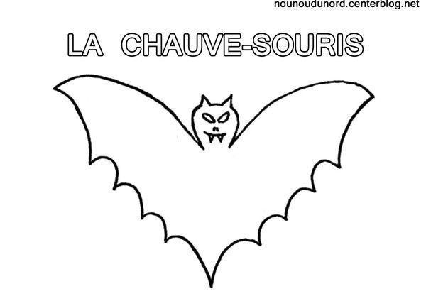 Coloriage La Chauve Souris