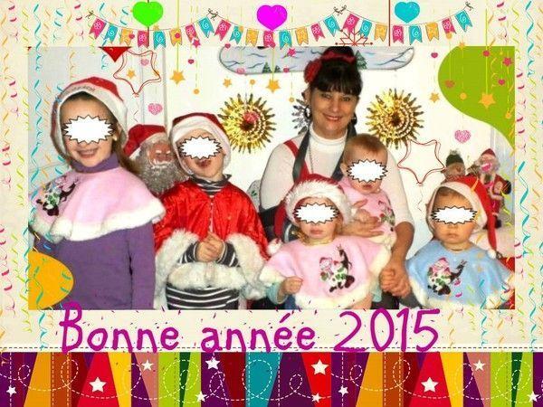 *********  Bonne Année 2015 ***********