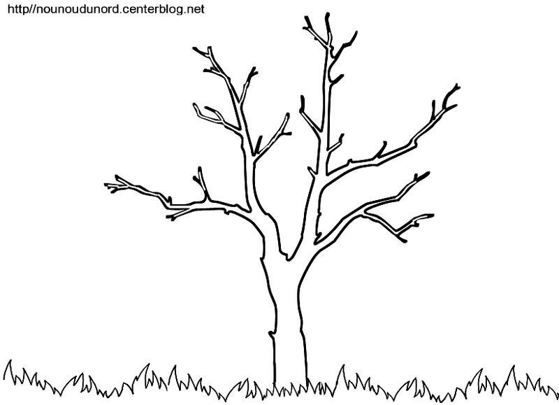 Coloriage automne arbe - Dessin arbre simple ...