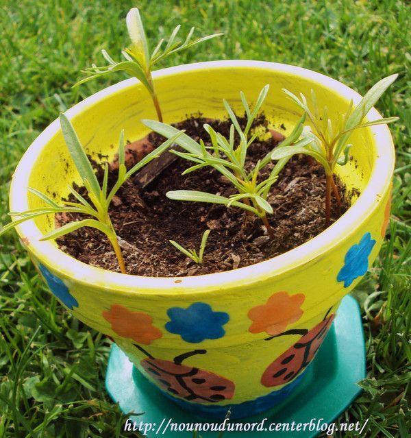 pots de fleurs pour nos graines. Black Bedroom Furniture Sets. Home Design Ideas