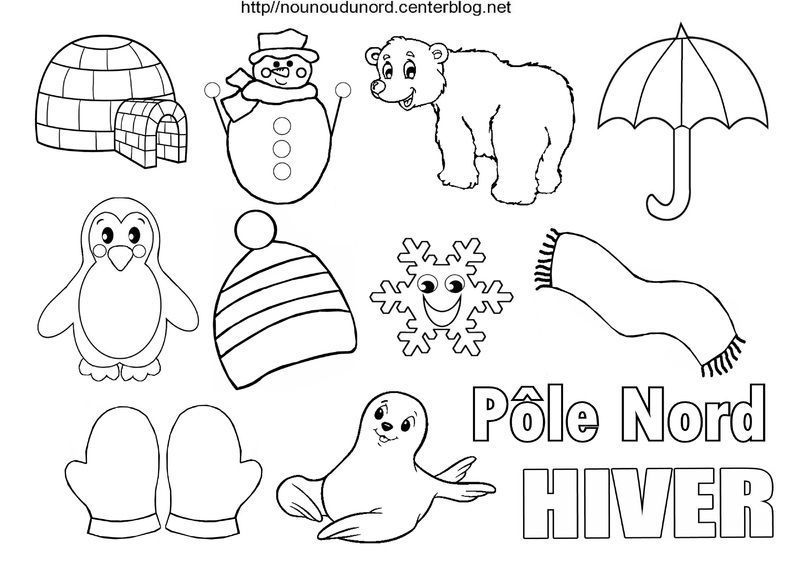 Coloriage hiver - Animaux pole nord ...