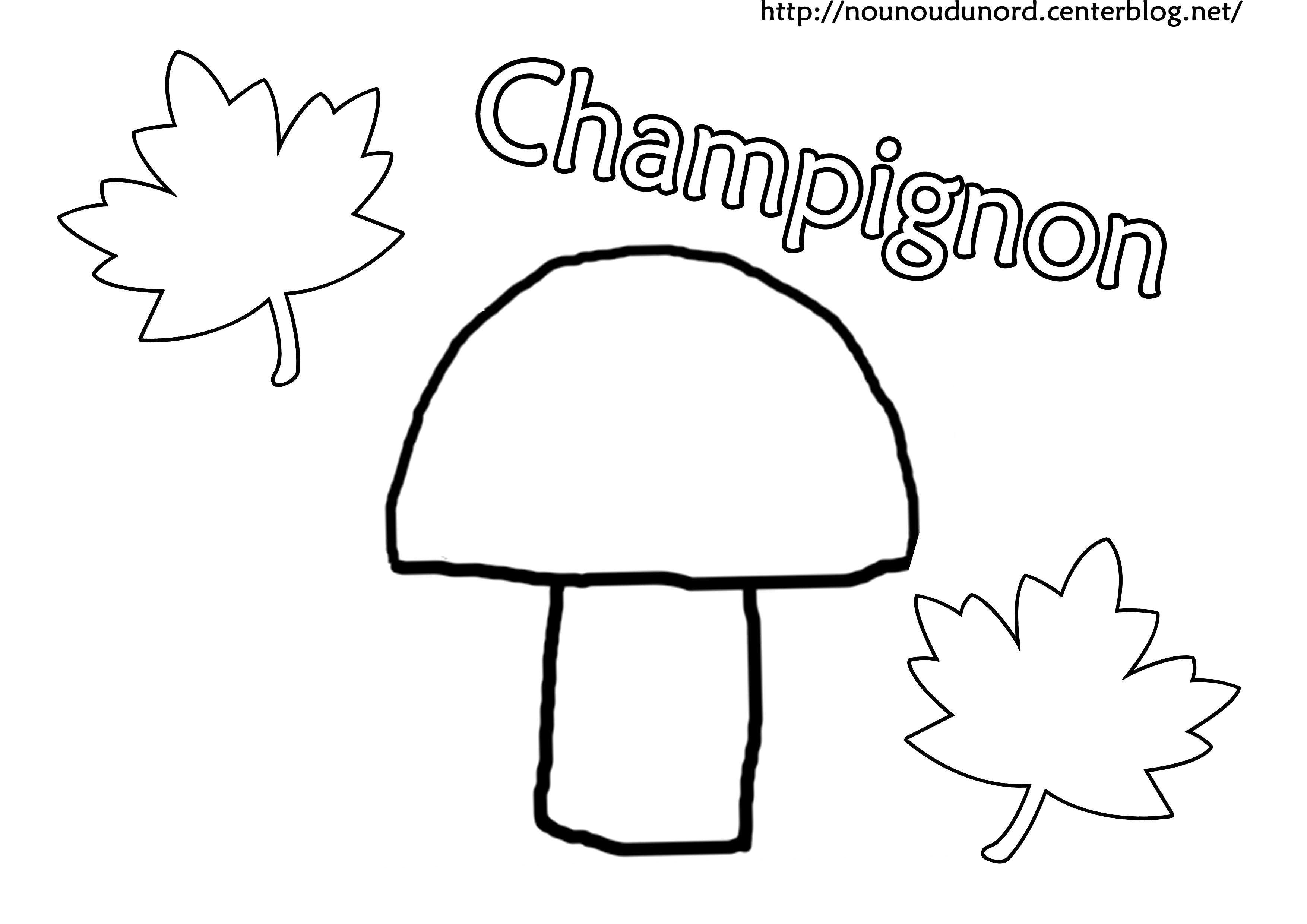 Coloriage Champignon Vvivante