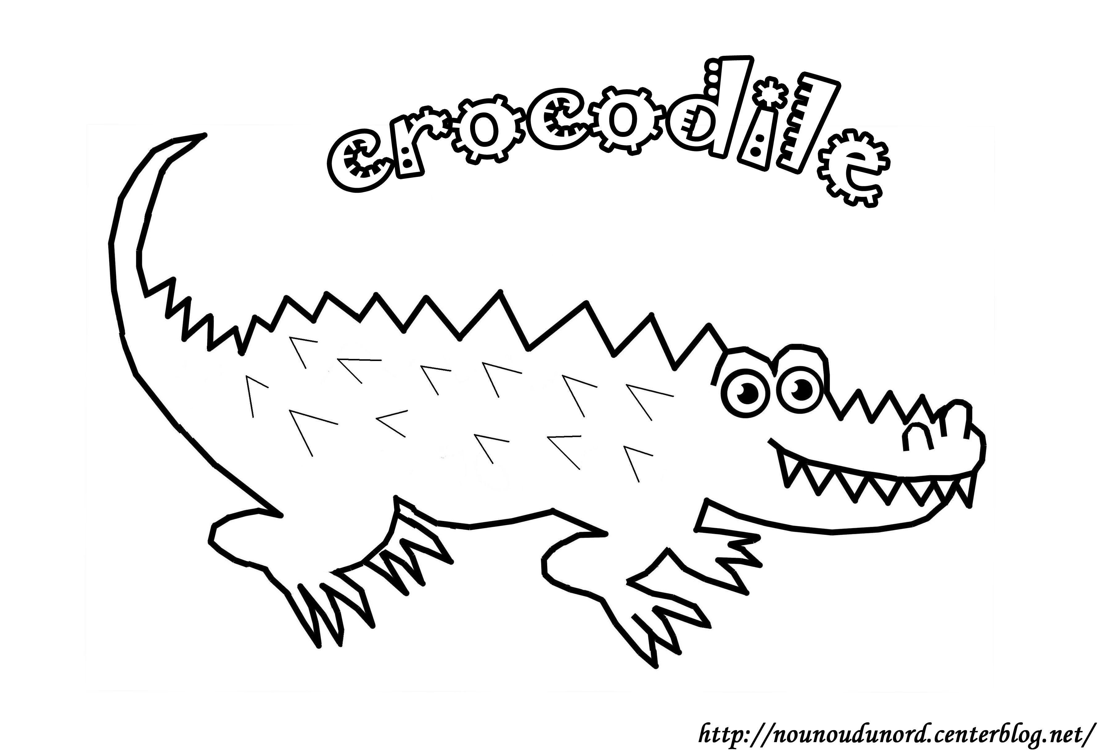 Coloriage animaux de eau - Crocodile en dessin ...