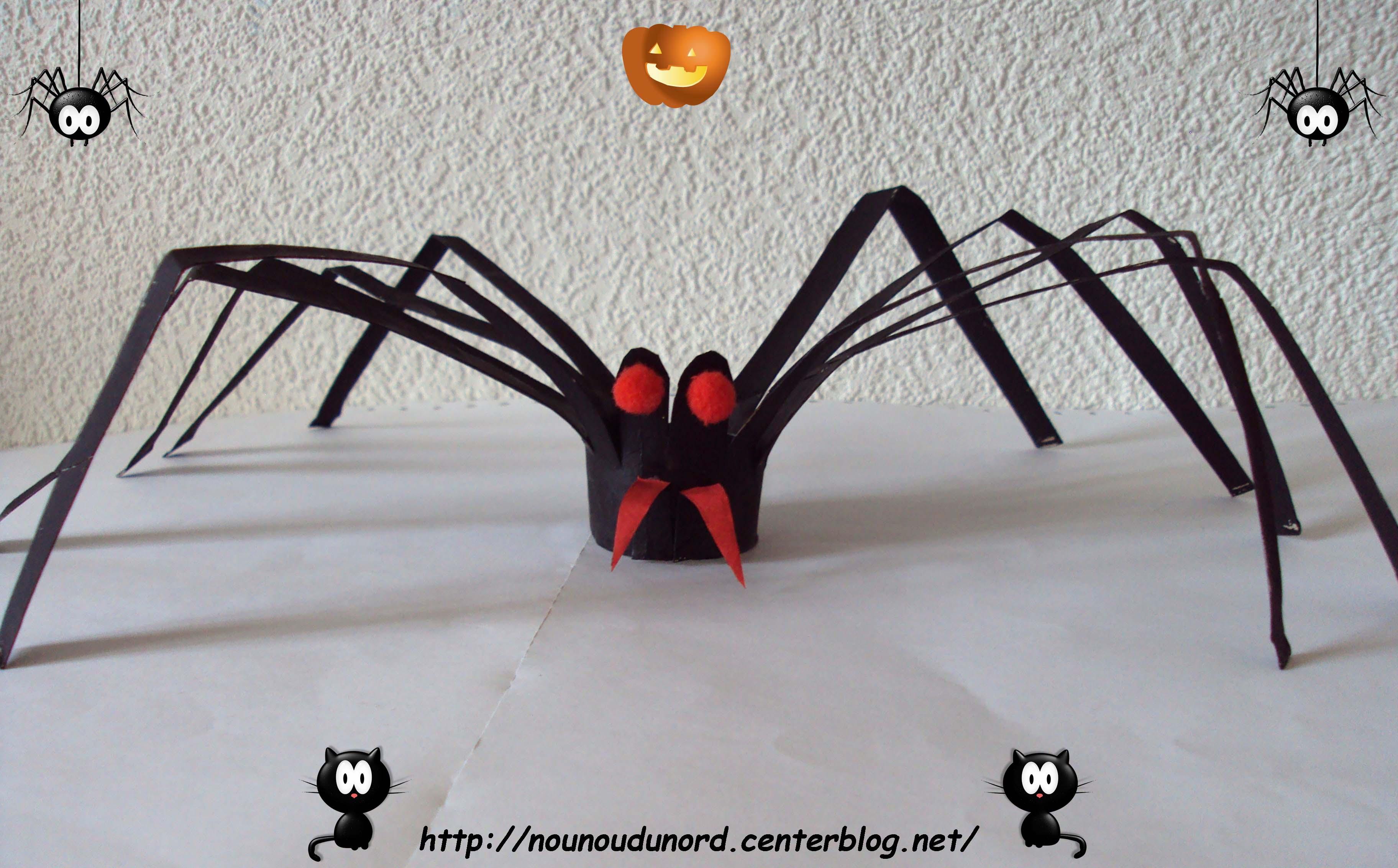 l 39 araign e r alis e avec un rouleau de sopalin 2010. Black Bedroom Furniture Sets. Home Design Ideas
