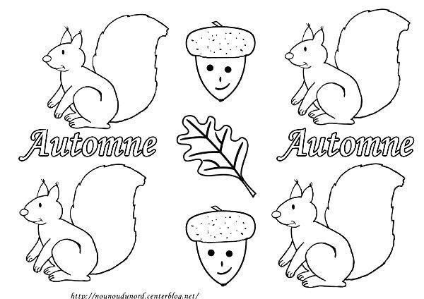 Coloriage cureuils d 39 automne par 4 - Coloriage d ecureuil ...