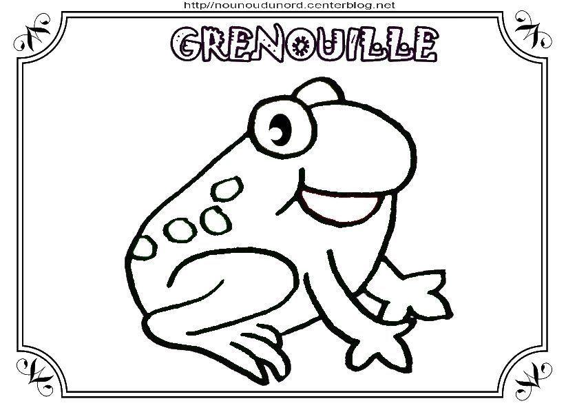 Grenouille coloriage gommettes en couleur - Grenouille coloriage ...