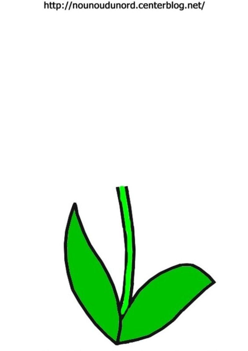Tige pour empreinte de main ou coller une fleur a colorier ou en ...