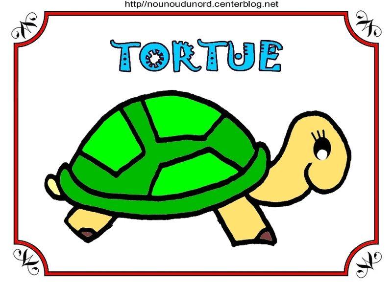 Prenom tortue 2018 - Tortue ninja couleur ...
